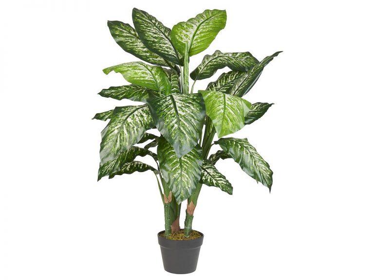 Kunstplant Dieffenbachia H120cm - HTT Decorations