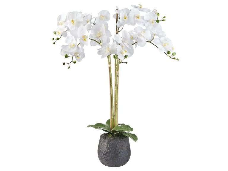 HTT Decorations - Kunstplant Orchidee / Phalaenopsis XXL 5-tak wit H90cm - kunstplantshop.nl
