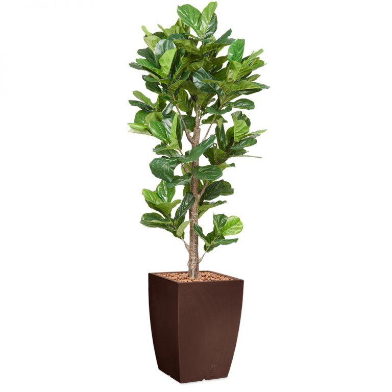 HTT - Kunstplant Ficus Lyrata in Genesis vierkant bruin H230 cm - kunstplantshop.nl