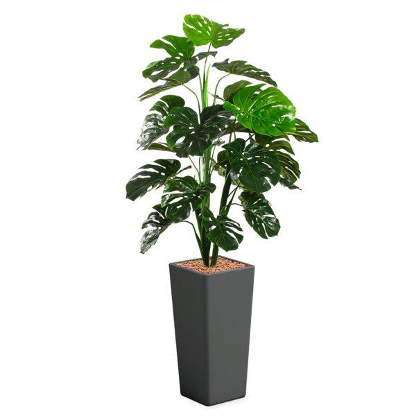 HTT - Kunstplant Monstera in Clou vierkant antraciet H185 cm - kunstplantshop.nl