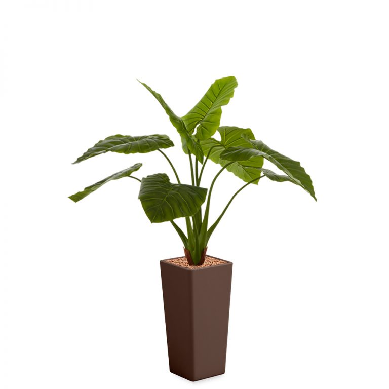HTT - Kunstplant Philodendron in Clou vierkant bruin H165 cm - kunstplantshop.nl