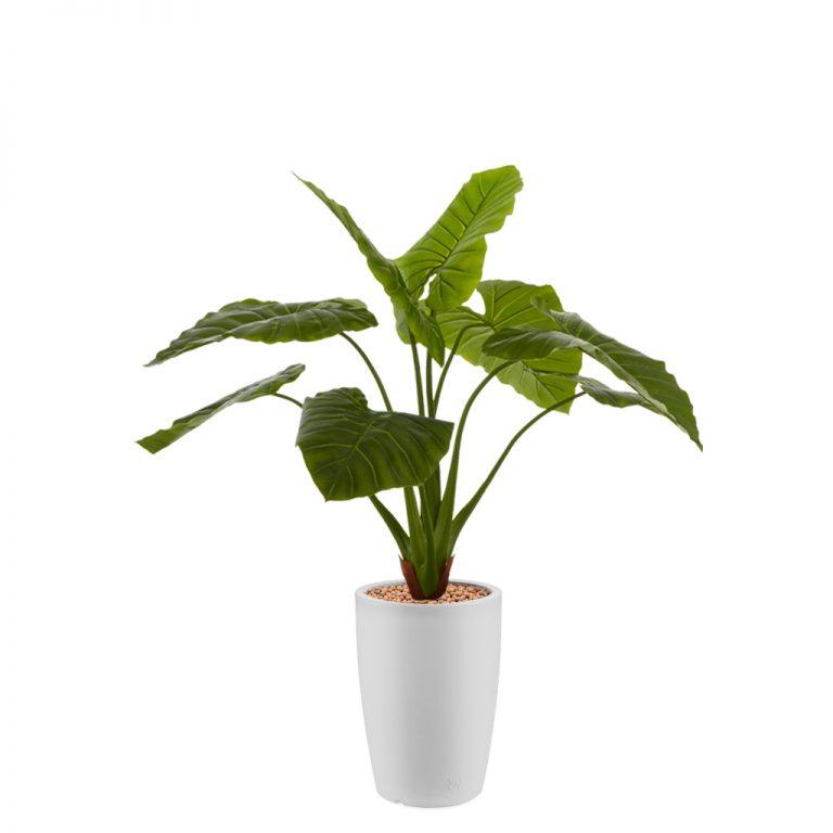 HTT - Kunstplant Philodendron in Genesis rond wit H140 cm - kunstplantshop.nl