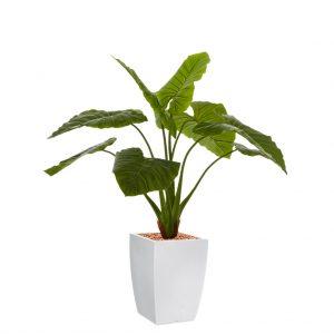 HTT - Kunstplant Philodendron in Genesis vierkant wit H140 cm - kunstplantshop.nl