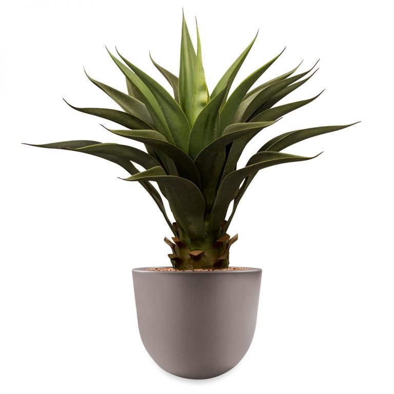 HTT - Kunstplant Agave vetplant in Eggy taupe H65 cm - kunstplantshop.nl