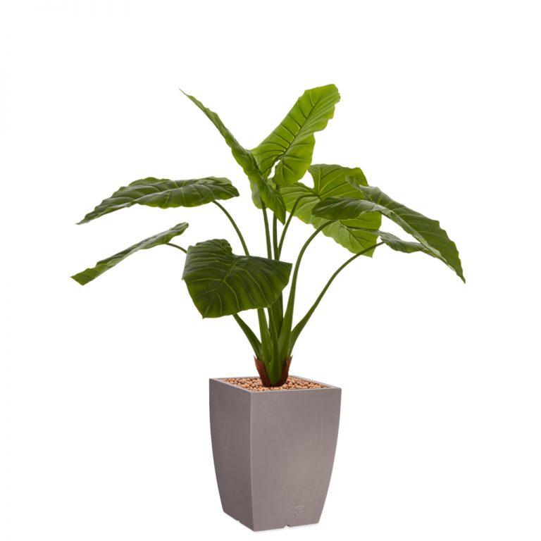 HTT - Kunstplant Philodendron in Genesis vierkant taupe H140 cm - kunstplantshop.nl