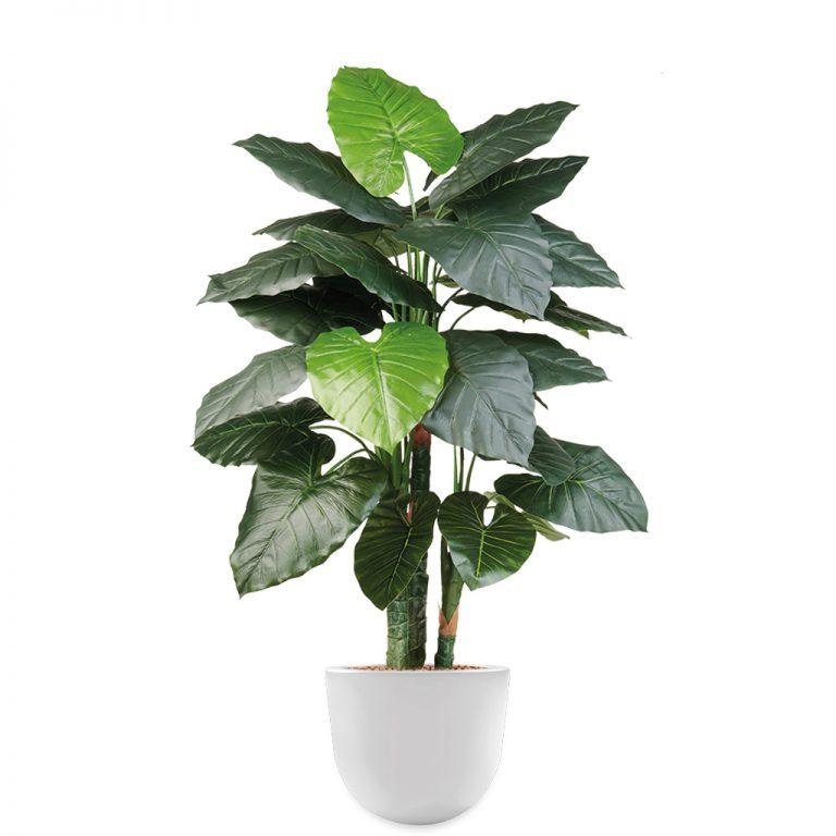 HTT - Kunstplant Philodendron in Eggy wit H135 cm - kunstplantshop.nl