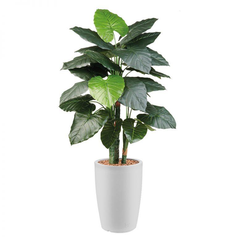 HTT - Kunstplant Philodendron in Genesis rond wit H150 cm - kunstplantshop.nl