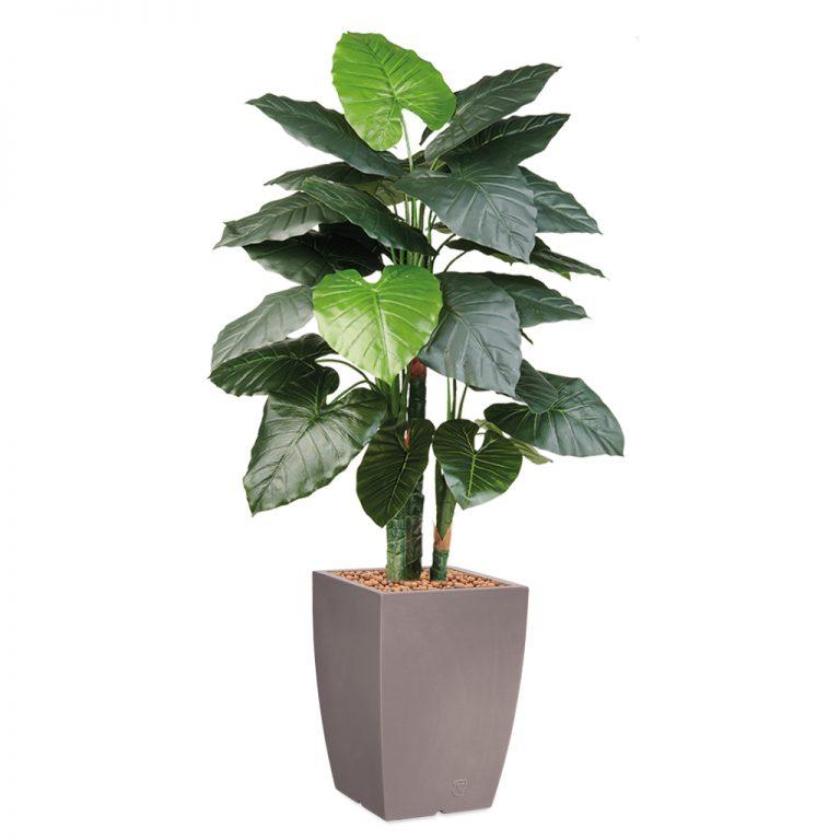 HTT - Kunstplant Philodendron in Genesis vierkant taupe H150 cm - kunstplantshop.nl