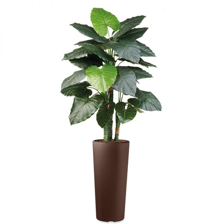 HTT - Kunstplant Philodendron in Clou rond bruin H185 cm - kunstplantshop.nl