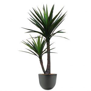 HTT - Kunstplant Yucca in Eggy antraciet H130 cm - kunstplantshop.nl