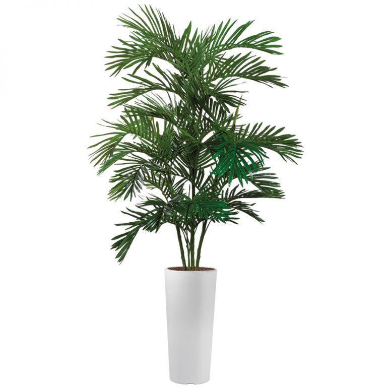 HTT - Kunstplant Areca palm in Clou rond wit H215 cm - kunstplantshop.nl