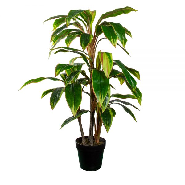 HTT Decorations - Kunstplant Cordyline breedbladig H100cm