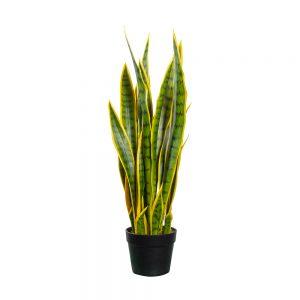 Kunstplant Sansevieria H70cm - HTT Decorations