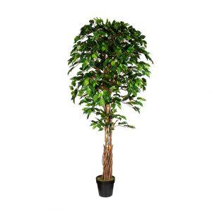 Kunstplant Ficus H180 cm - HTT Decorations