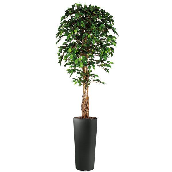 Kunstplant Ficus in Clou rond antraciet H250 cm - HTT Decorations