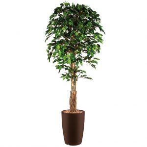 HTT - Kunstplant Ficus in Genesis rond bruin H210 cm - kunstplantshop.nl