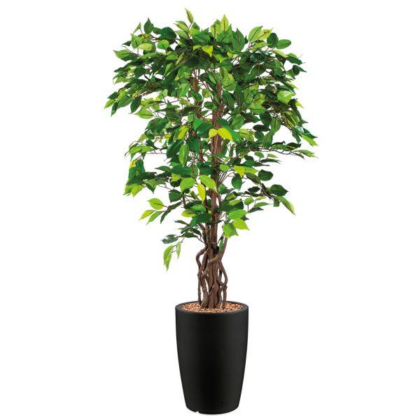 HTT - Kunstplant Ficus in Genesis rond antraciet H165 cm - kunstplantshop.nl