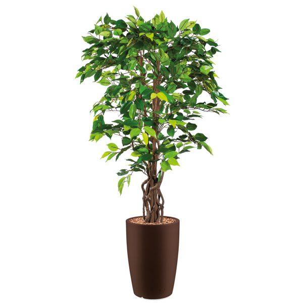 HTT - Kunstplant Ficus in Genesis rond bruin H165 cm - kunstplantshop.nl