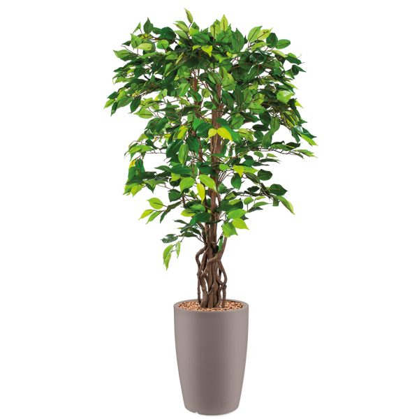 HTT - Kunstplant Ficus in Genesis rond taupe H165 cm - kunstplantshop.nl