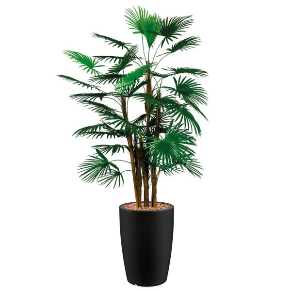 HTT - Kunstplant Rhapis palm in Genesis rond antraciet H150 cm - kunstplantshop.nl