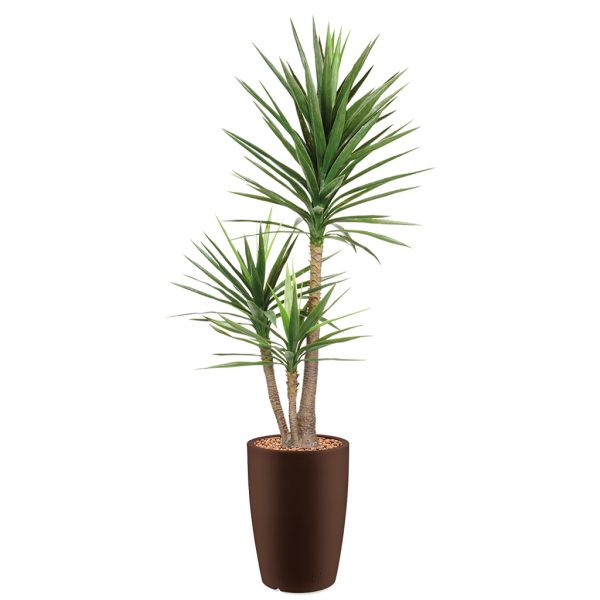 HTT - Kunstplant Yucca in Genesis rond bruin H200 cm - kunstplantshop.nl