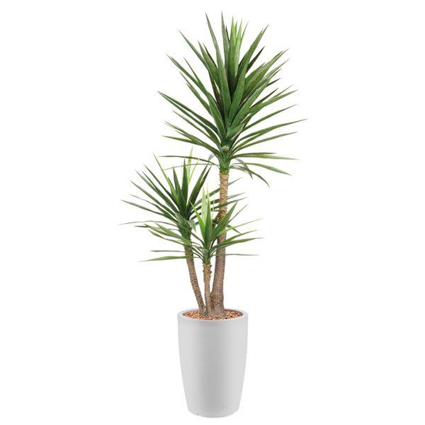 Kunstplant Yucca in Genesis rond wit H200 cm - HTT Decorations