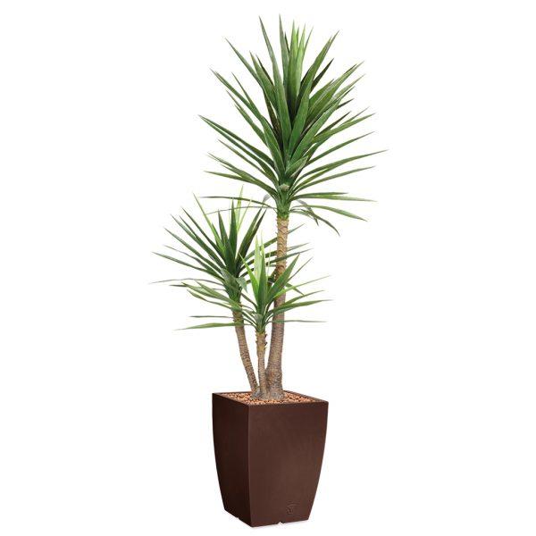 HTT - Kunstplant Yucca in Genesis vierkant bruin H200 cm - kunstplantshop.nl