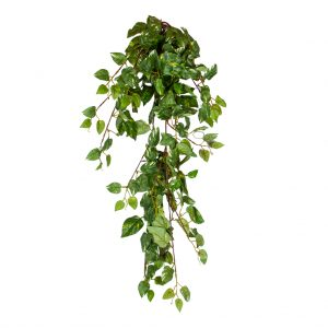 HTT Decorations - Kunstplant Scindapsus groen L80 cm - kunstplantshop.nl