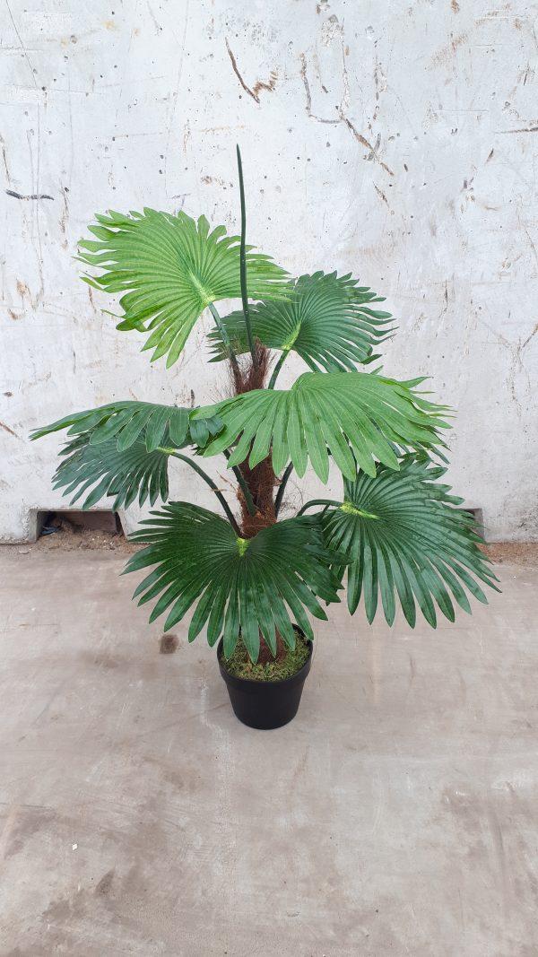 Kunstplant Fan palm H100cm - HTT Decorations